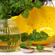 A citromfűtea fellendíti az egészséget