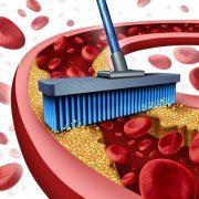 A K2-vitamin egészséges artériákat és kardiovaszkuláris védelmet biztosít