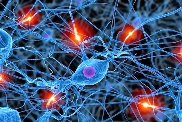 Sejtszinten lévő agyi impulzusok.