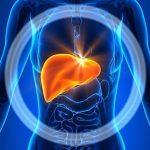 Májméregtelenítés a krónikus betegségek elkerülésére