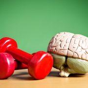 Meglepő igazság a testmozgásról és a jobb agyi egészségről