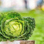 A magas vérnyomás ellenségei: zöld tea, gránátalma, kurkuma és társaik