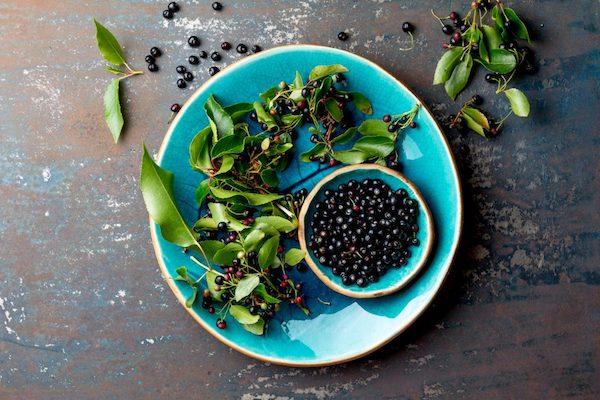 Chilei borbogyó, azaz maqui bogyók egy türkiz színű tányéron.