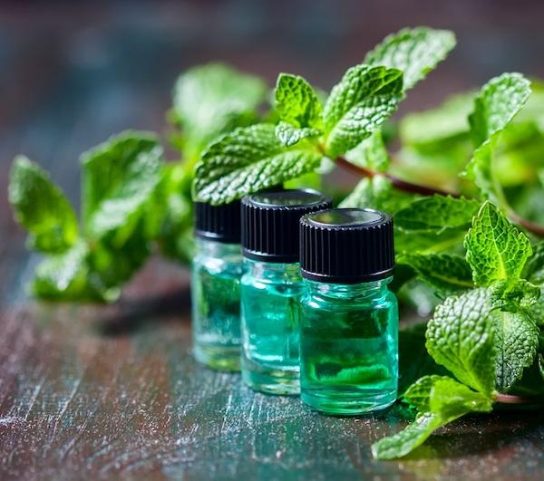 Zöld üvegekben borsmentaolaj, mellette a növény.