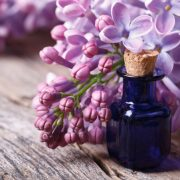Az orgonaolaj terápiás hatásai