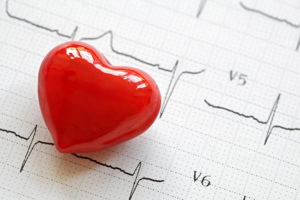 EKG-s diagrammon egy piros, műanyag szív.