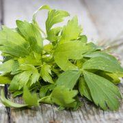 Gyógynövényként és fűszernövényként is funkcionál: lestyán