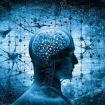 Kutatások szerint csökkent az emberek IQ-szintje a '70-es évek óta
