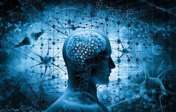 Emberi agyat érő különféle impulzusok.