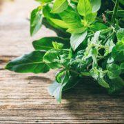 Miben segítenek a keserű gyógynövények?