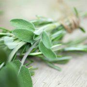 A perimenopauza és a menopauza tüneteinek enyhítése gyógynövényekkel