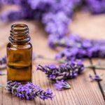 A migrén nagy ellensége: levendulaolaj