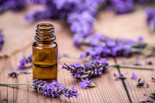 Levendula-illóolaj kis üvegben, mellette a gyógynövény lila virága.