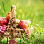 Az alma fogyókúrabarát vagy hizlal?