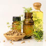 Biztonságos antibakteriális szer: koriandermag-olaj