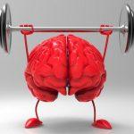 Az agy erejének javítása egyszerűen