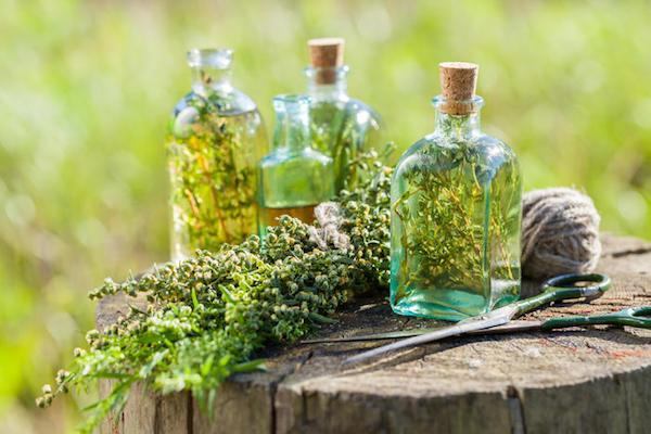 Különféle gyógynövényekből készült főzetek egy fatőkén, mellettük olló és spárga.