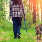 Miért olyan egészséges a séta?