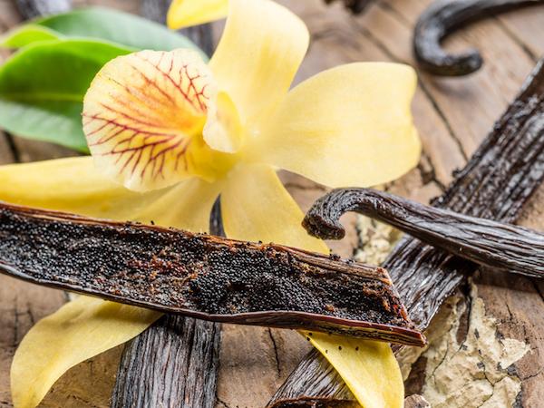 Vaníliarúdban lévő magok és a vanília csodaszép virága.