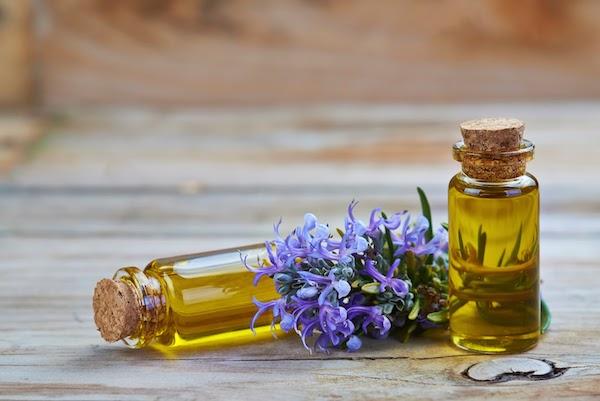 Rozmaring illóolaja két üvegcsében, mellette a virágzó gyógynövény.