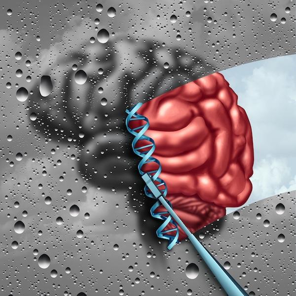 Ablaktörlő egy agy előtt – demencia, kognitív hanyatlás.