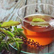 Az ezerarcú gyógynövény: szent bazsalikom