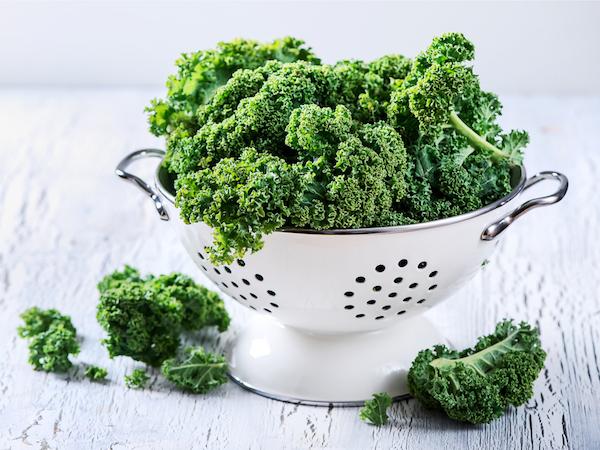 Fodros levelű saláta lyukacsos, fehér tartóban.