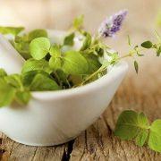 Migréncsillapító gyógynövények, vitaminok és relaxációs technikák