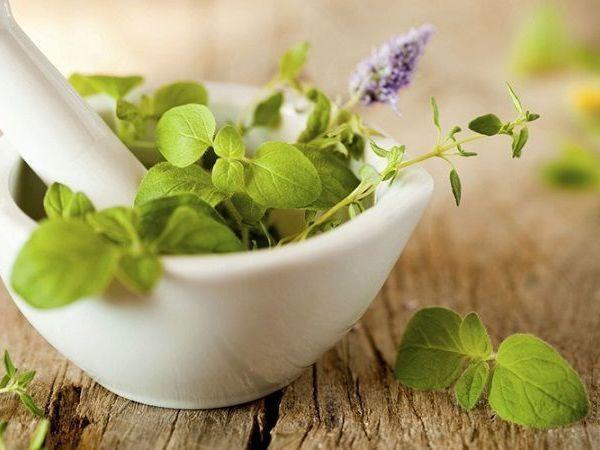 Különféle gyógynövények és mozsártörő egy fehér mozsárban.
