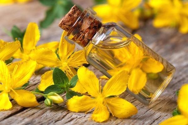 Orbáncfűolaj, mellette a gyógynövény sárga színű virágai.