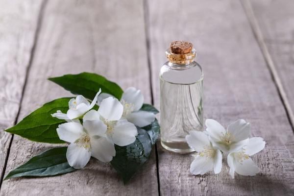 Jázmin illóolaja, mellette a növény gyönyörű és illatos virága.