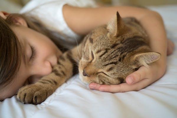 Kislány együtt alszik a cicájával az ágyban.