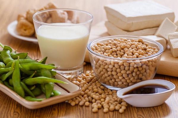 Szójabab és a blőle készült szójatermékek: tej, szósz, sajt, granulátum.