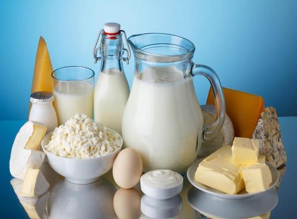 Különféle tejtermékek egymás mellett: tej, sajtok, túró, vaj, tojás, joghurt, kefir.