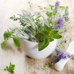 Orvosságként funkcionáló gyógynövények