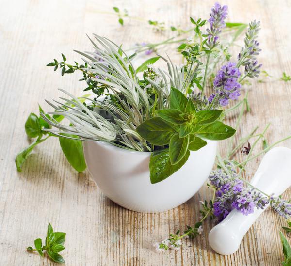 Különféle gyógynövények mozsárban, mellettük a törő.