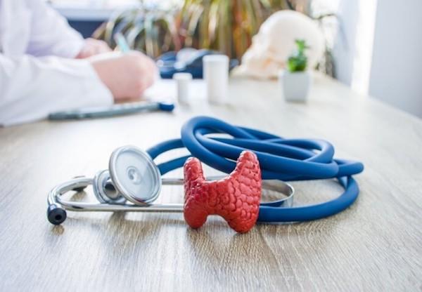 Orvos asztalán a fonendoszkóp mellett egy pillangó alakú szerv, a pajzsmirigy műanyag makettje.