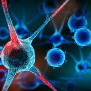 A rákos betegségek elkerülhetők?