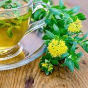 Győzze le a kimerültséget gyógynövényekkel!