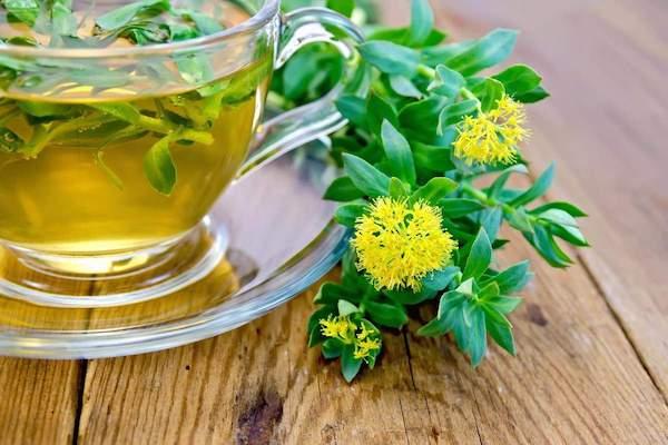 Illatos rózsavarjúháj (Rhodiola rosea) és a belőle főzött gyógynövénytea.