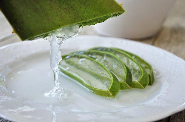 Aloe vera leveléből kicsurgatott zselé egy tányéron, melyen már vannak levélszeletkék is.
