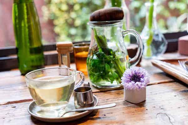 Friss növényekből készült gyógytea kancsóban és pohárban.