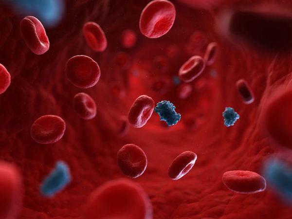 Inzulin a vérben.