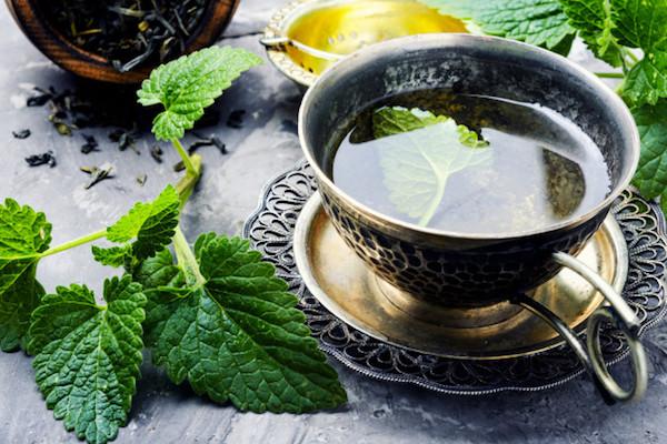 Antik kis csészében citromfűtea friss gyógynövényből.
