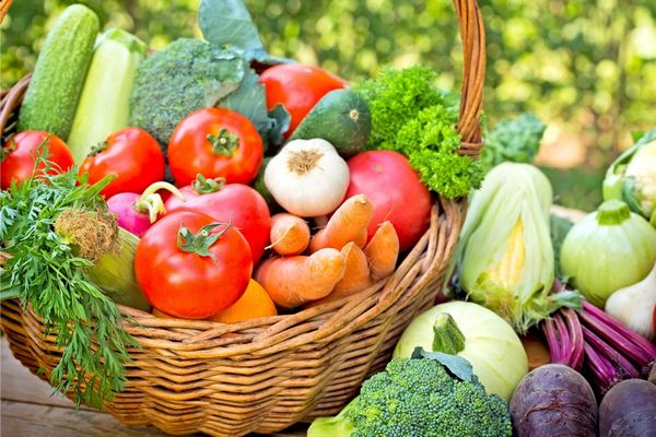 Egy kosárban szezonális zöldségek, paradicsom, kukorica, brokkoli, cékla, főzőtök, fokhagyma, uborka, petrezselyemzöld, retek és sárgarépa.