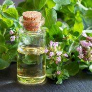 Az oregánóolaj és a baktériumok