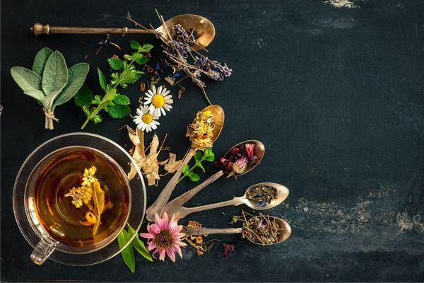 Egy asztalon sokféle tea kanalakban elhelyezve, mellettük teáscsészében gyógytea és gyógynövények.