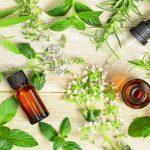 Gyógynövények, melyek fejlesztik a koncentrációt és a memóriát
