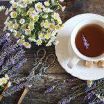 Hatékony téli szorongásoldó gyógynövények