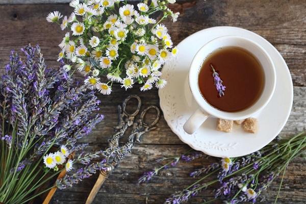 Egy asztalon levendulavirágok és kamillavirágok, mellettük levendulatea egy fehér teáscsészében.